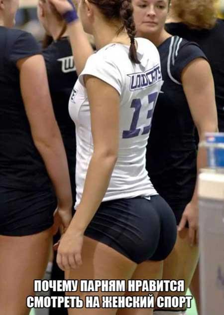 Приколы про спорт в картинках фото 480-384
