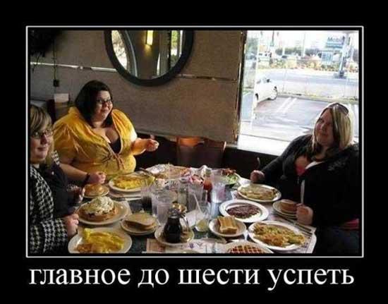 Демотиваторы про жирных