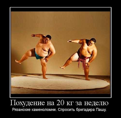 Демотиваторы про похудение