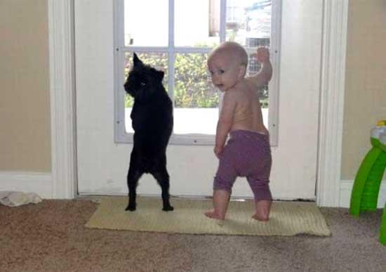 Фото приколы про детей с животными