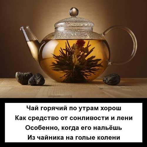 Стишки про чай с юмором