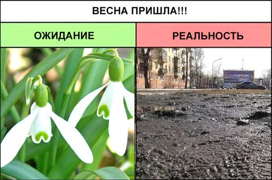 Картинки приколы весна пришла