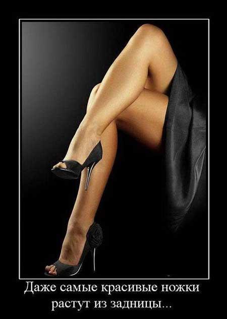 Афоризмы о женских ногах