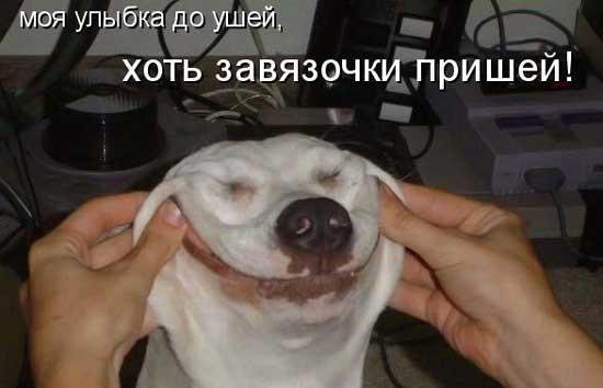 Прикольные фото с улыбкой