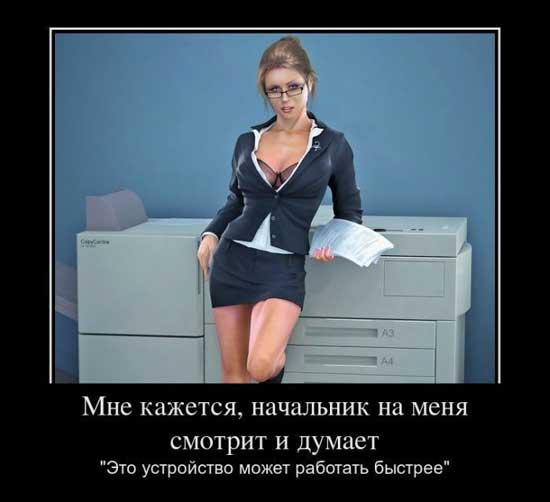 Приколы про начальника - картинки