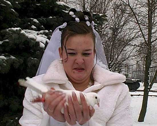 Фото приколы с невестами