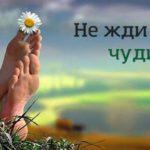 Прикольные статусы про чудо