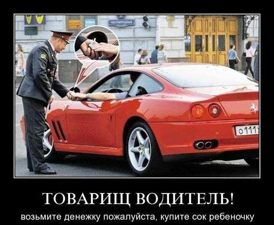 Смешные картинки про водителей