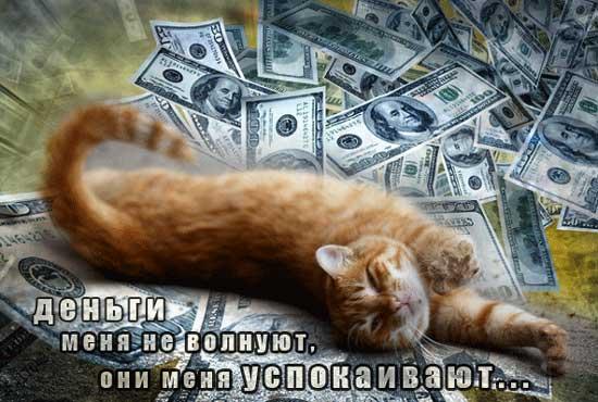 Картинки рабочий, приколы про деньги картинки с надписями