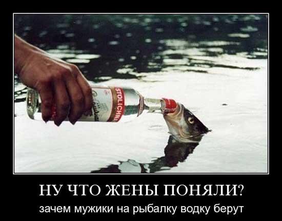 Картинки приколы про водку