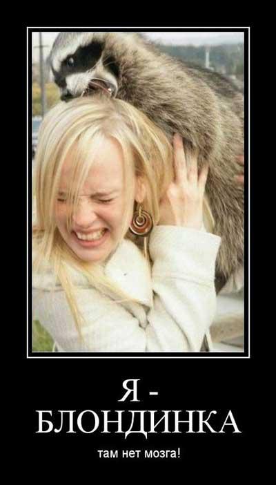 Демотиваторы про блондинок