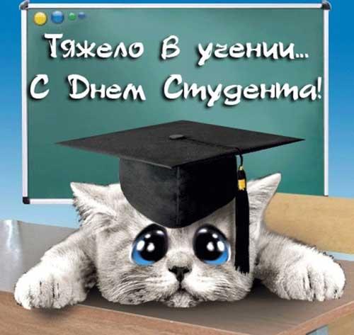 Прикольные открытки на День студента