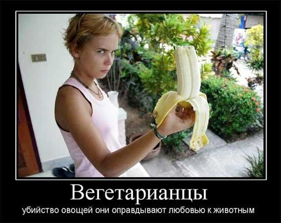 Демотиваторы про вегетарианство