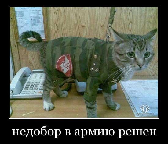 https://shutkijumora.ru/wp-content/uploads/2019/01/kartinki-pro-armiyu-03.jpg
