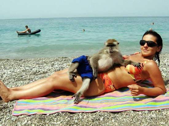 Смешные фото девушек на пляже