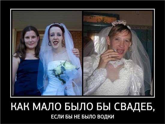 Прикольные картинки с надписями про свадьбу